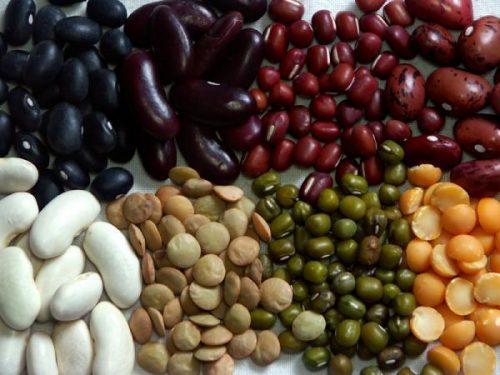 Các loại đậu là giải pháp hữu ích khi tìm hiểu vấn đề ăn gì khi bị trào ngược dạ dày thực quản. Thực phẩm này rất có lợi cho tiêu hóa. Người bệnh nên ngâm đậu cho mềm trước khi chế biến, đây là mẹo để chế biến các loại đậu một cách phù hợp cho tiêu hoá.