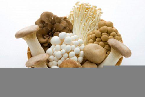 Với người bị viêm loét hang vị dạ dày nên kiêng ăn nấm