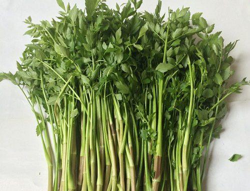 Khi bị viêm loét hang vị dạ dày nên hạn chế ăn các loại rau củ như: Củ cải già, rau cải bắp già, rau cần, rau hẹ, khoai môn