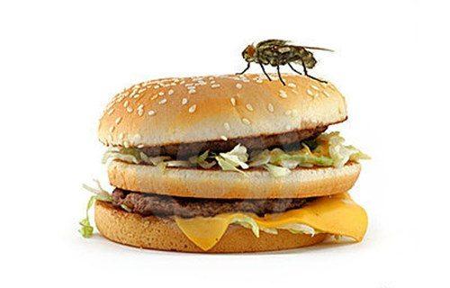 Ăn phải thức ăn nhiễm khuẩn là nguyên nhân làm bùng nổ bệnh về đường tiêu hóa vào mùa hè.