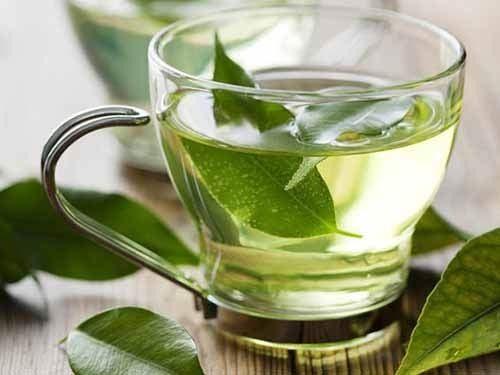 Các thành phần trong trà xanh giúp ức chế sự phát triển của vi khuẩn HP