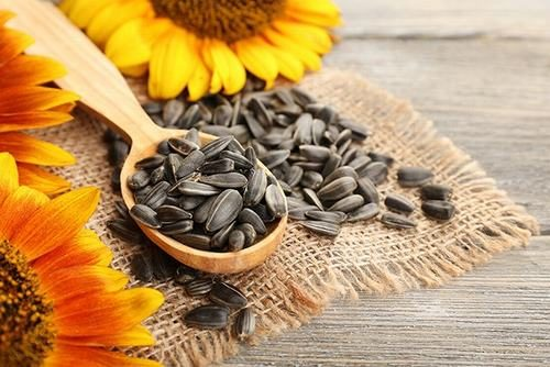 Trong loại hạt này hầu như không có axit và nếu có thì có rất ít axit. Nếu ăn loại hạt này có thể giúp làm giảm nồng độ axit bên trong dạ dày, ngăn ngừa nguy cơ mắc bệnh ở dạ dày hiệu quả.