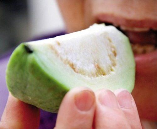 Đau bao tử có nên ăn ổi không là băn khoăn chung được nhiều người đặt ra