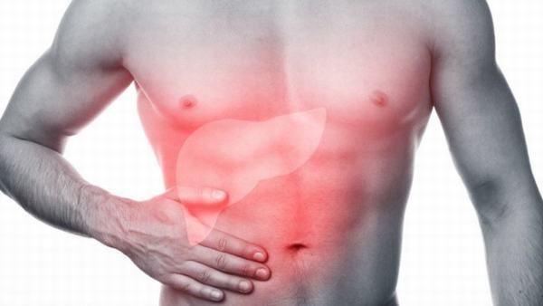Khi bị gan nhiễm mỡ, người bệnh sẽ thấy xuất hiện các triệu chứng như chán ăn, mệt mỏi, vàng da