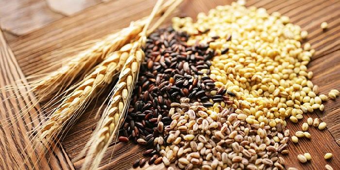Ngũ cốc sẽ giúp mẹ bổ sung thêm một lượng calorie cần thiết, tốt cho quá trình trí não của thai nhi
