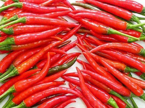 Những người bị loét dạ dày không nên ăn ớt