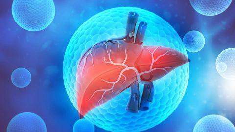 Phác đồ điều trị viêm gan B của Bộ Y tế là gì?