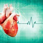 Bạn có biết chi phí siêu âm tim giá bao nhiêu?