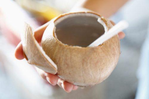 Nước dừa là thức uống tuyệt vời cho người bệnh sốt xuất huyết.