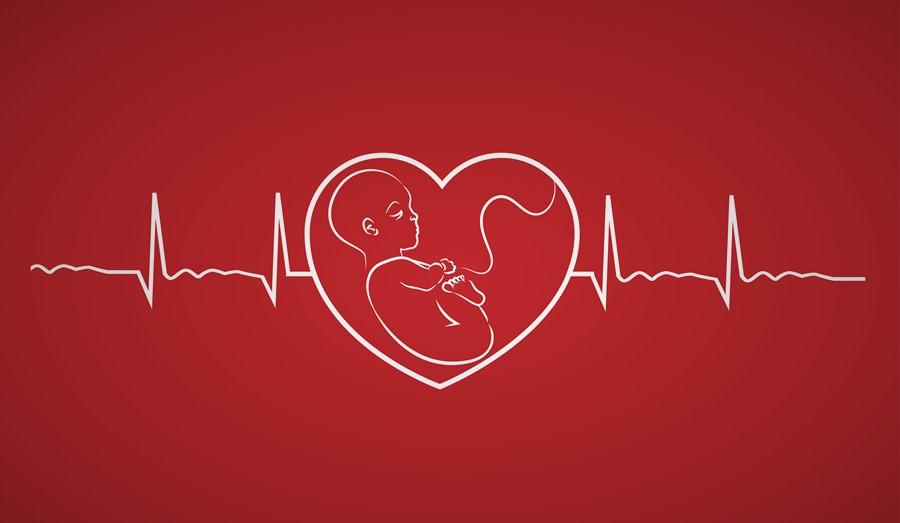 Nhịp tim bình thường của thai nhi