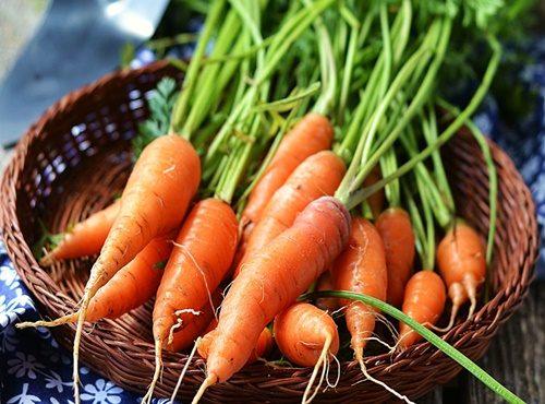 Chất beta – caroten có trong cà rốt giúp giảm nguy cơ mắc các bệnh ung thư như như: ung thư dạ dày, ung thư vòm họng, ung thư vú và ung thư tuyến tiền liệt.