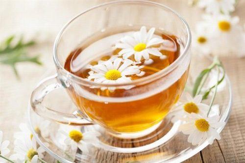 Trà hoa cúc rất tốt cho người đau dạ dày