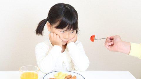 Mách bố mẹ những mẹo hay giúp khắc phục tình trạng trẻ 5 tuổi biếng ăn