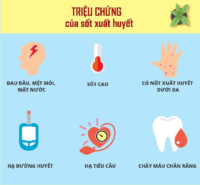 Triệu chứng của bệnh sốt xuất huyết là sốt cao, đau đầu dữ dội, nổi ban đỏ, chảy máu chân răng, hạ đường huyết, hạ tiểu cầu,...