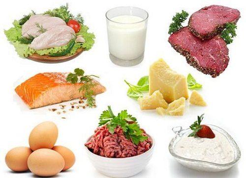 Thực phẩm bổ sung protein cho cơ thể