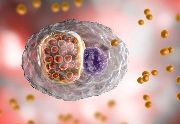 Viêm kết mạc kéo dài có thể do vi khuẩn Chlamydia.