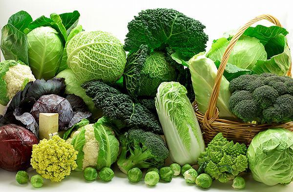 Người bệnh viêm trực tràng cần bổ sung rau xanh nhằm tăng cường chất xơ