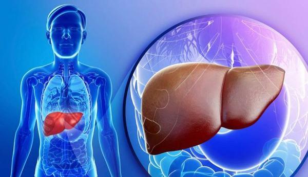 AFP có thể tăng cao trong ung thư gan cũng có thể do các bệnh về gan khác như viêm gan, xơ gan...