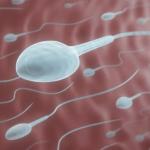 Nam giới bị tinh trùng yếu có chữa được không?
