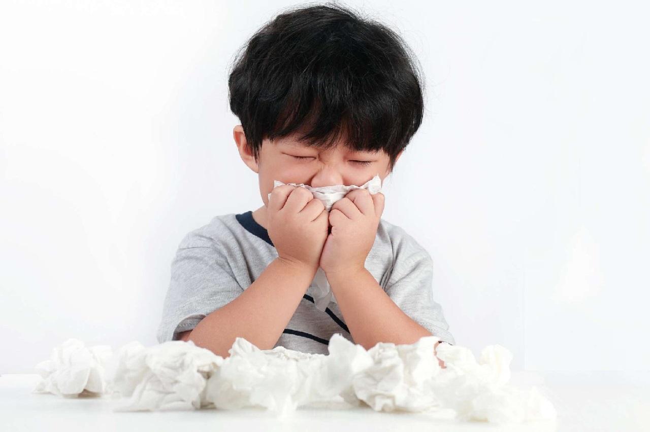 Hắt hơi, sổ mũi là triệu chứng điển hình khi bạn bị viêm mũi dị ứng