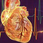 Mạch vành tim: Nguy cơ bệnh lý, cách điều trị và bảo vệ
