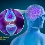 Phòng bệnh Parkinson bằng cách nào?