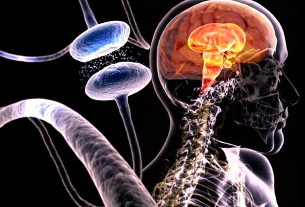 giải đáp: bệnh Alzheimer sống được bao lâu?
