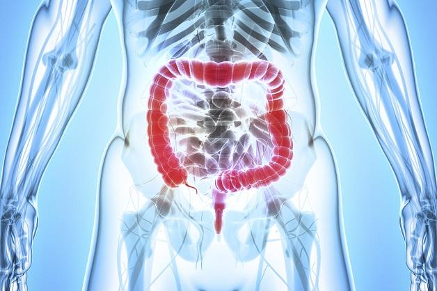 Kỹ thuật siêu âm đại tràng