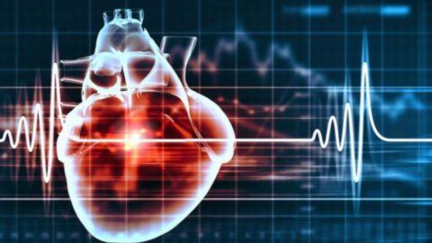 Siêu âm tim – Phương pháp chẩn đoán hình ảnh ưu việt