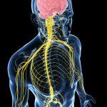 Bị viêm dây thần kinh có nguy hiểm không?