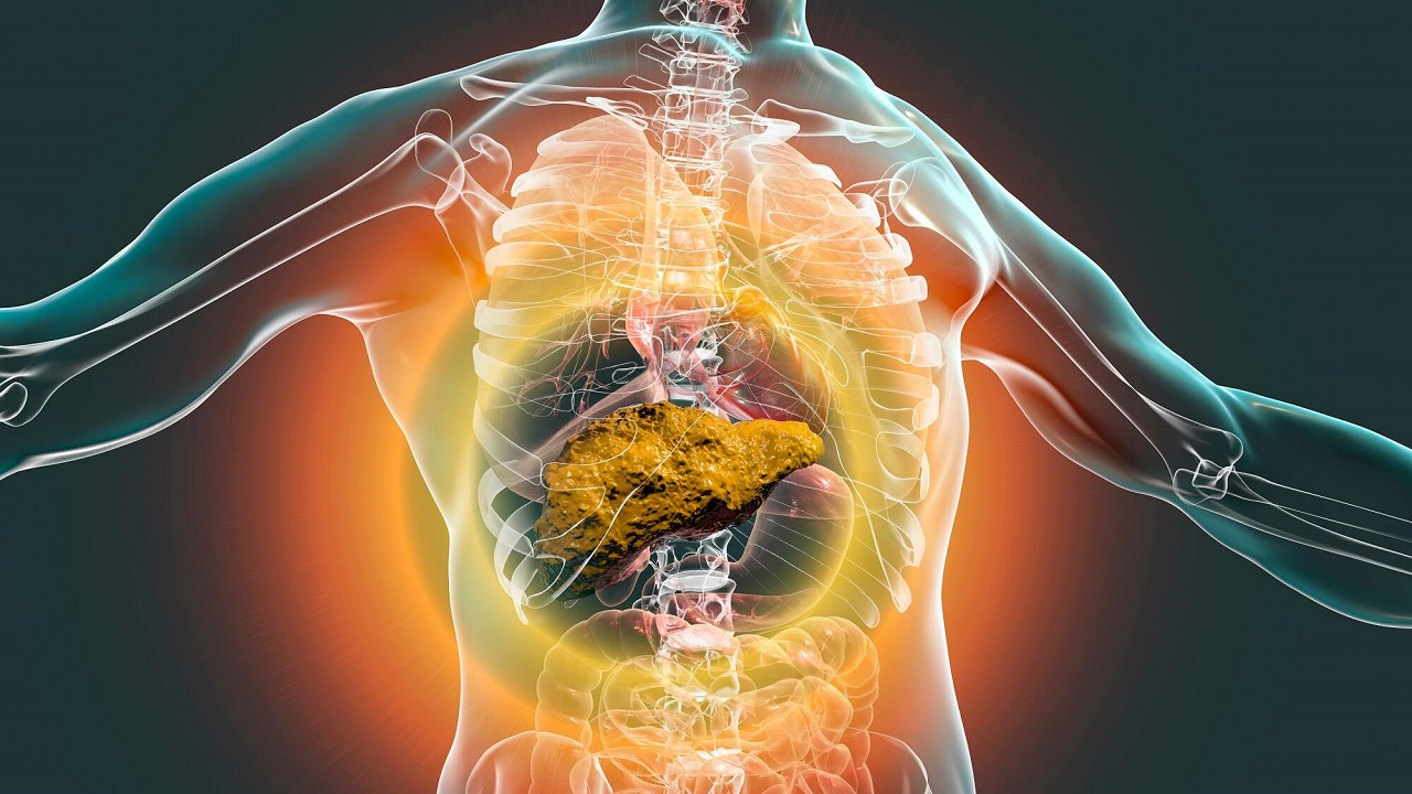Viêm gan B mãn tính có nguy hiểm không và cách điều trị