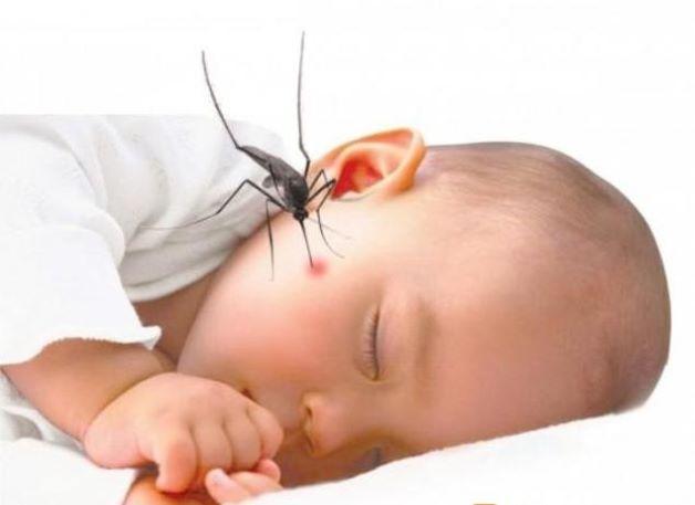 Sốt xuất huyết ở trẻ 1 tuổi là tình trạng truyền nhiễm nguy hiểm với tốc độ lây lan nhanh chóng